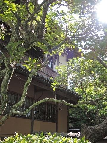 伊丹から奈良へ^^_a0211886_23153615.jpg