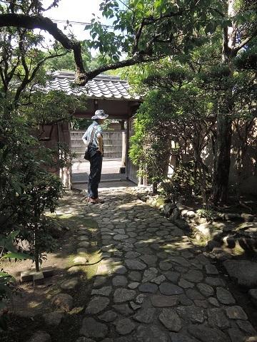 伊丹から奈良へ^^_a0211886_23175325.jpg