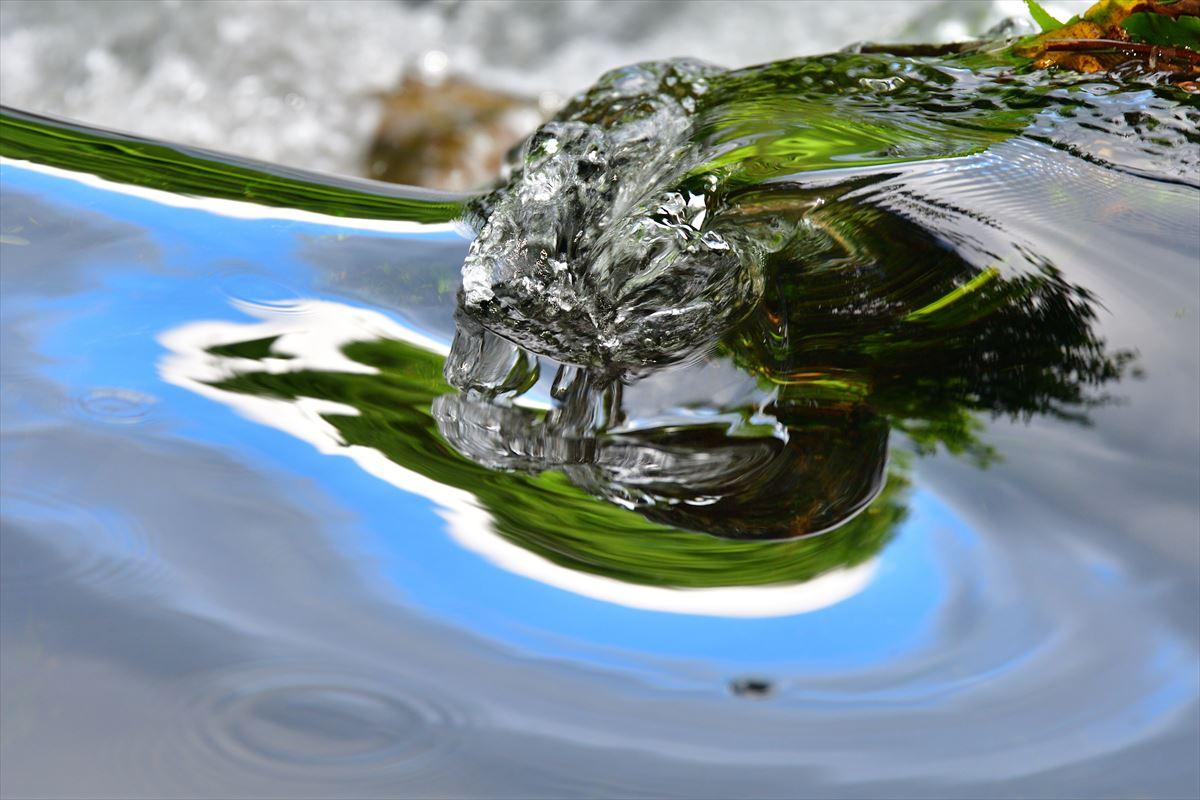 美しい水の風景 苫小牧研究林_a0145819_20374424.jpg