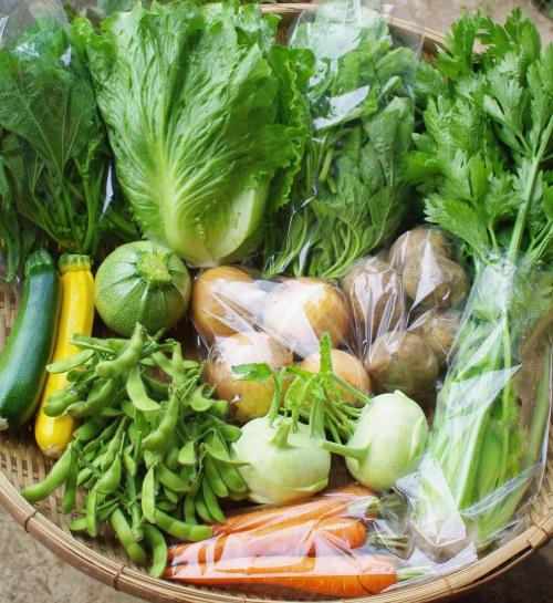 今週の野菜セット(7/5~7/9着)_c0110869_13472879.jpg