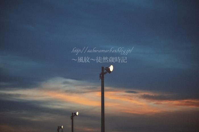夕闇の中で輝く。_f0235723_20462293.jpg