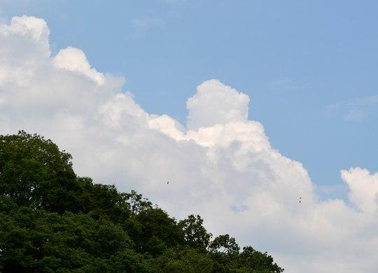 猛暑日にお隣の国のJAZZシンガーを聴く_b0102572_17482764.jpg