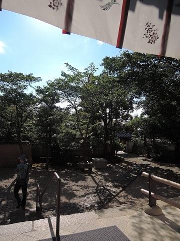 奈良の続き^^;_a0211886_21091741.jpg