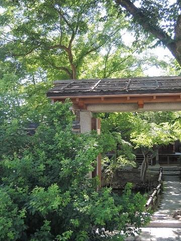 奈良の続き^^;_a0211886_21145686.jpg