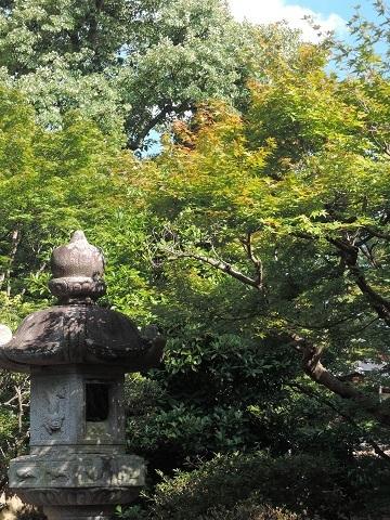 奈良の続き^^;_a0211886_21165361.jpg