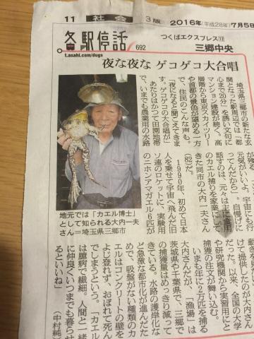 大内一夫さんはカエルを2万匹捕っている_a0163788_19434247.jpg