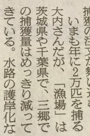 大内一夫さんはカエルを2万匹捕っている_a0163788_1946466.jpg