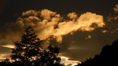 雲海の朝_e0120896_07101918.jpg