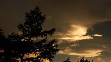 雲海の朝_e0120896_07103305.jpg