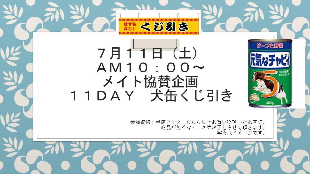 160606 イベント告知_e0181866_12101757.jpg