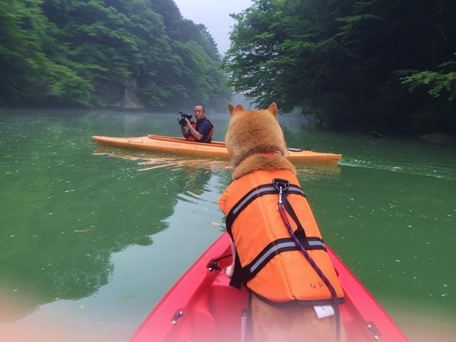 板室ダム湖でカヌー!_a0126590_05303756.jpg
