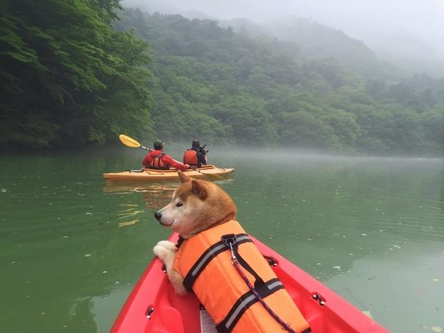 板室ダム湖でカヌー!_a0126590_05310012.jpg