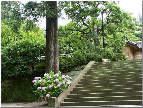 北鎌倉(円覚寺・他)_d0123528_18202775.jpg