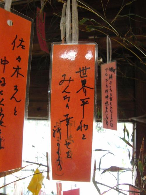 七夕Day_e0222340_15515756.jpg