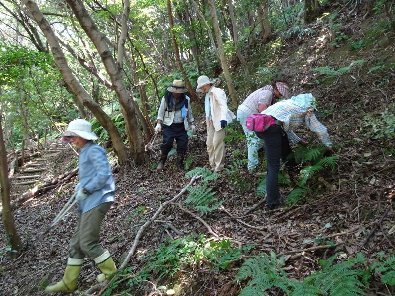 うみべの森にもカブトムシはいた_c0108460_17250784.jpg