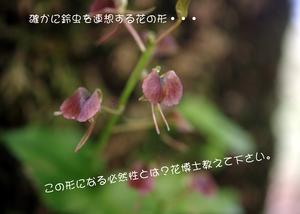 f0193521_21242282.jpg