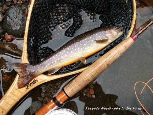本日の釣り_d0261148_18151179.jpg