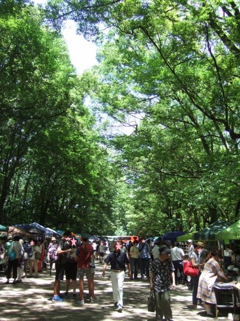 爽やかな風と樹の下で 第19回森の手作り市 有難うございました_a0306166_02205608.jpg