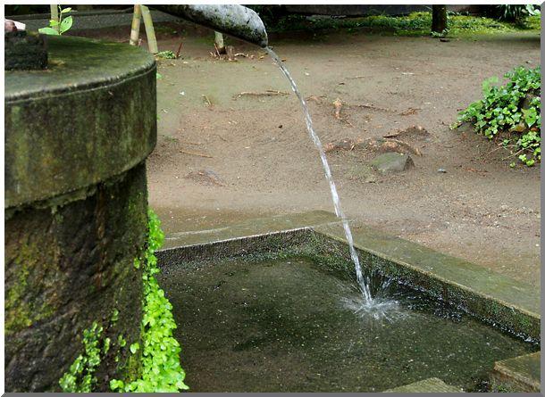 北鎌倉(東慶寺)_d0123528_1736032.jpg