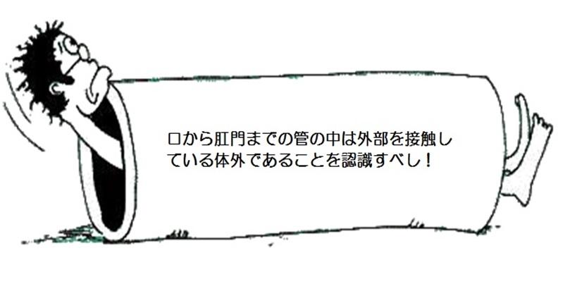 d0070361_8553378.jpg