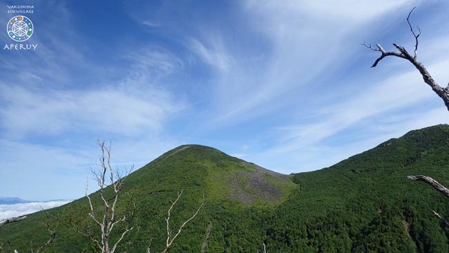 レシャップベルに向けて part3 八ヶ岳スリーピークス試走_f0252883_05582499.jpg