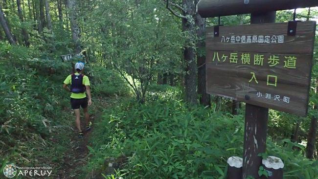 レシャップベルに向けて part3 八ヶ岳スリーピークス試走_f0252883_05595208.jpg