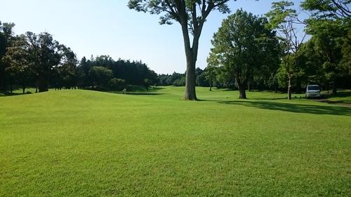 「第十一回初見さん追悼ゴルフ」_a0075684_1885529.jpg