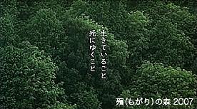 b0216318_3464937.jpg