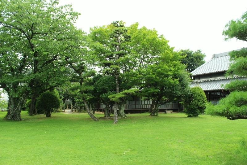 茶和や香(48)、六鹿茶遊会(37)_b0220318_23572138.jpg