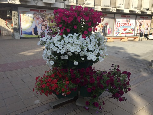 ルーマニア6_e0227436_18381496.jpg