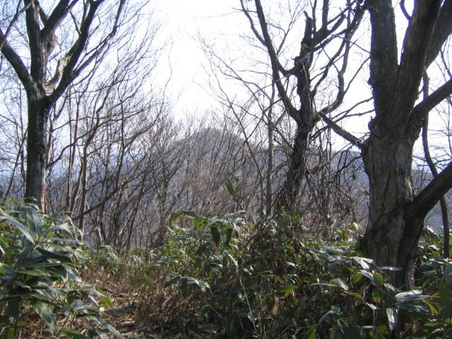 松江近郊のトレランコース⑨_d0007657_11271088.jpg