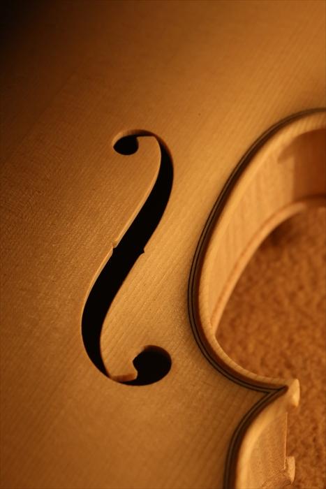 55 & ホワイトヴァイオリン_d0047461_836820.jpg
