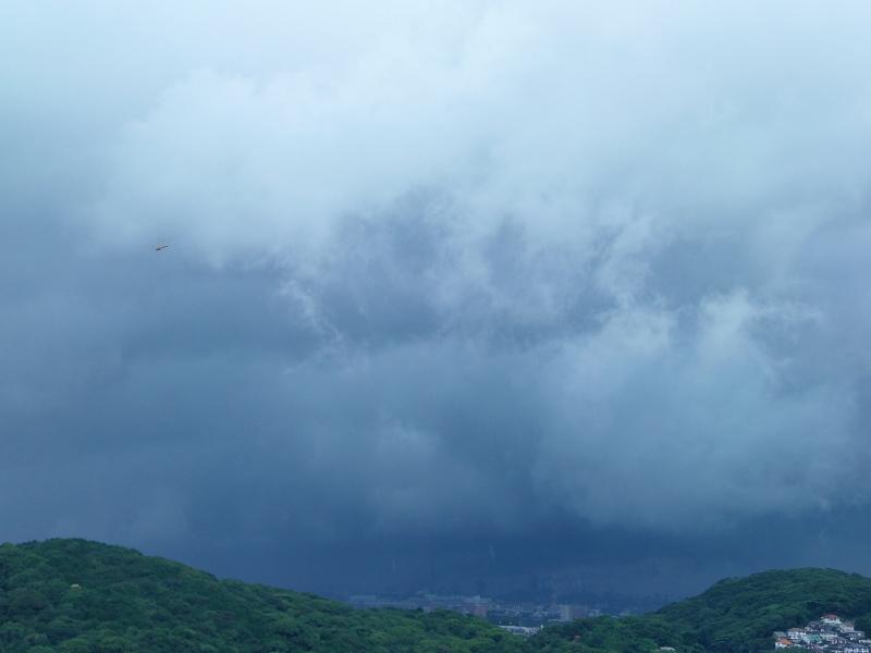 大雨です。_a0125419_07572154.jpg