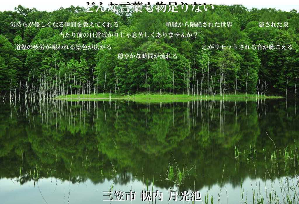 c0330441_09365474.jpg