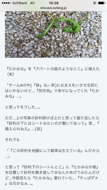 b0136045_14330203.jpg