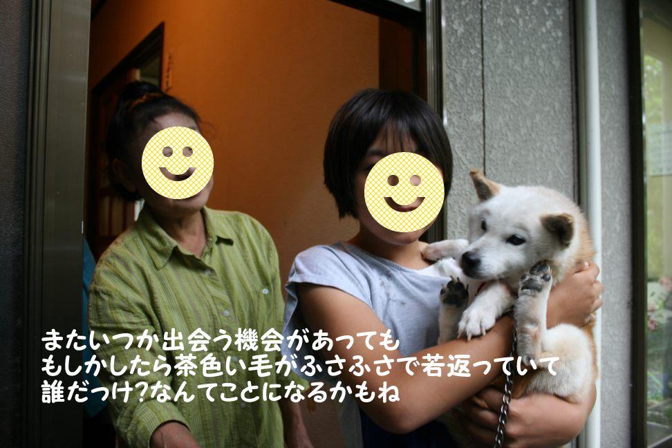 新しい家族! 初めての家族!_f0242002_231796.jpg