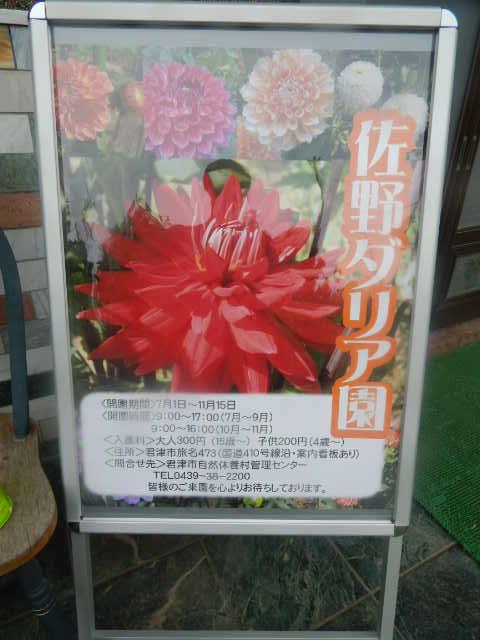 b0352112_2012255.jpg