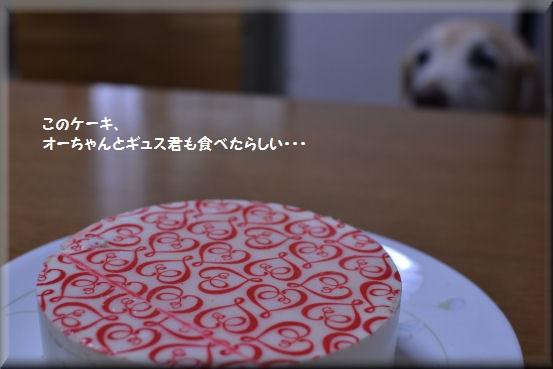 f0363141_654999.jpg