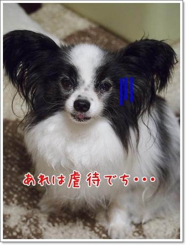 d0013149_23101943.jpg