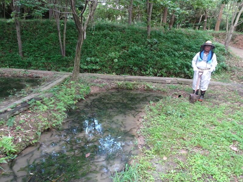 10本桜周辺の草刈り・・・うみべの森_c0108460_18264980.jpg