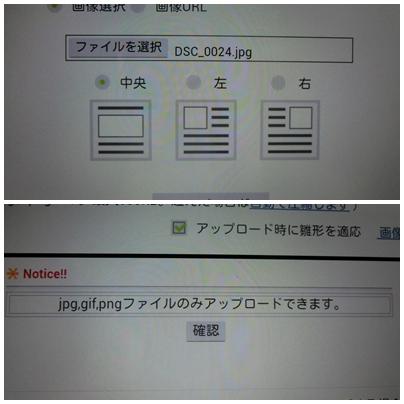 a0199979_16361942.jpg