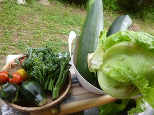 ★野菜生活♪_c0343936_21161245.jpg
