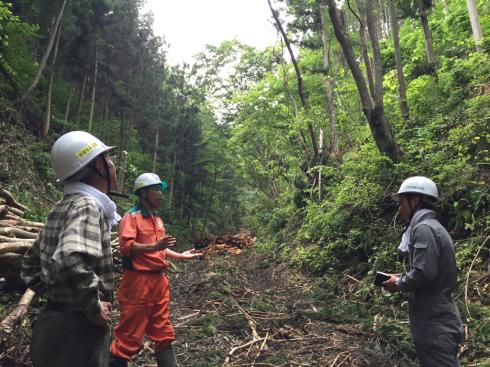 豊かな森の恩恵〜いわての山で働こう〜_b0199244_17532036.jpg