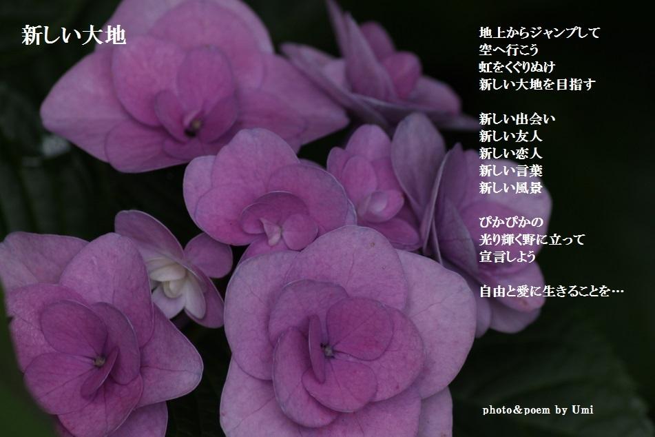 f0351844_15245672.jpg