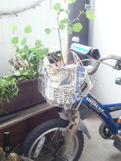 お気に入りの錆び自転車と kashicoroさんへ納品_c0267235_21333858.jpg