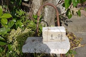 工房+shop「土の種」さん(沖縄)へ_f0226293_9292026.jpg