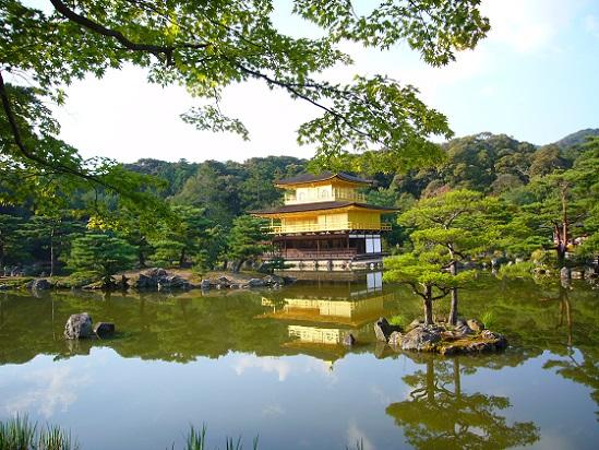 京都、金閣寺_c0192215_1631643.jpg