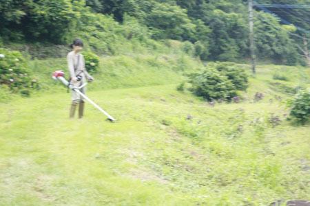 田舎の一日_f0208315_21280156.jpg
