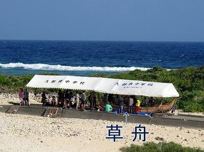 7月17日 草舟_b0158746_1543864.jpg