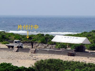 7月17日 草舟_b0158746_1555375.jpg